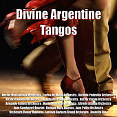 Divine Argentine Tangos by Various Artists