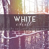 White Chill: Delicate Chillout Soundscapes by Various Artists
