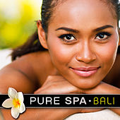 Play & Download Pure Spa Bali by Various Artists | Napster