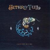 Catfish Rising von Jethro Tull