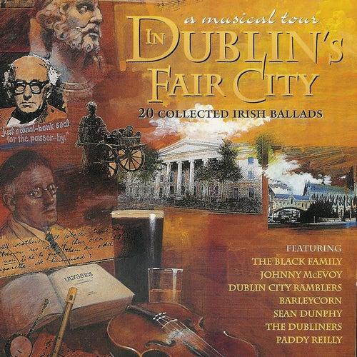 A Musical Tour In Dublin's Fair City by Various Artists