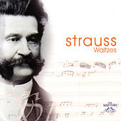 Strauss - Waltzes by Waltz The Symphony