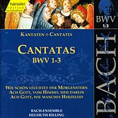 Play & Download J.S. Bach - Cantatas BWV 1-3 by Bach-Collegium Stuttgart | Napster