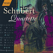Play & Download String Quartet in D Minor D810 / String Quartet in C Major D32 by Verdi Quartett | Napster