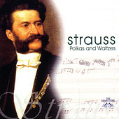 Strauss: Polkas & Waltzes by Waltz The Symphony