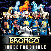 Play & Download Indestructible by Bronco | Napster