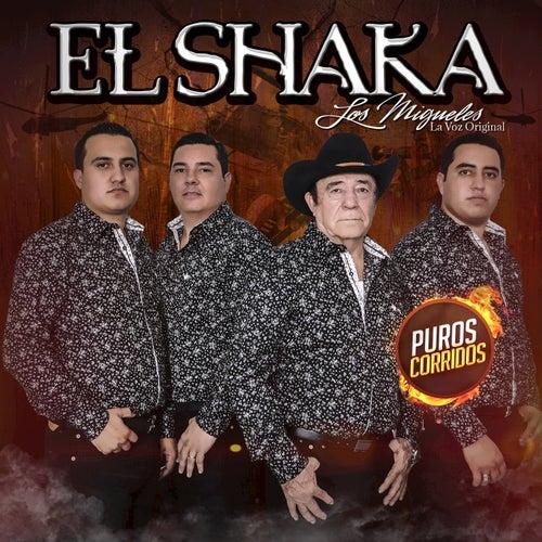 Play & Download El Shaka by Los Migueles (La Voz Original) | Napster