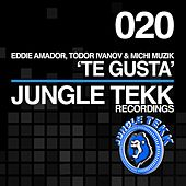 Play & Download Te Gusta by Eddie Amador | Napster