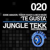 Te Gusta by Eddie Amador