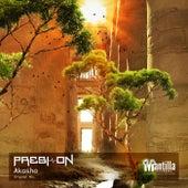 Akasha by DJ Nelson