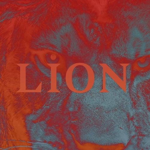 Lion de PNL
