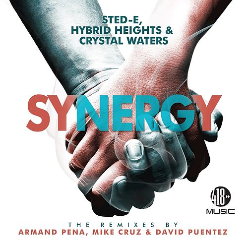 Synergy (The Remixes) by Crystal Waters