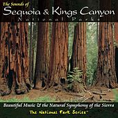 Play & Download The Sounds of Sequoia and Kings Canyon National Parks by Various Artists | Napster