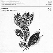 Play & Download Tabernanthe by Nadja | Napster