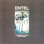 Something Always Goes Wrong by Dntel