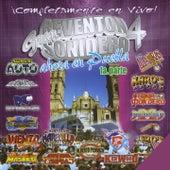 Gran Reventón Sonidero 4: Ahora en Puebla, Pt. 1 by Various Artists