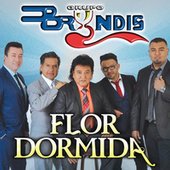 Play & Download Flor Dormida by Grupo Bryndis | Napster