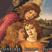 Play & Download Pachelbel / Walter Rinaldi / Bach: Works for String Orchestra and Concertos by Various Artists | Napster