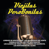 Viejitas Pero Bonitas by Various Artists