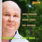 Play & Download Schoenberg, R. Strauss & Hessenberg: Lieder by Gerhard Siegel | Napster