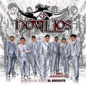 Play & Download 100% Romantico by Novillos Musical | Napster
