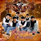 Pepito y Su Caballo by Novillos Musical