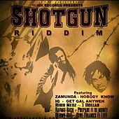 Play & Download DJ Seggie 1 Link Records Presents Shot Gun Riddim by Various Artists | Napster
