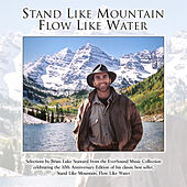 Stand Like Mountain, Flow Like Water by Various Artists