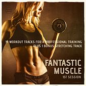 Play & Download Fantastic Muscle, Vol. 1 (20 Workout Tracks For A Professional Training) by Various Artists | Napster