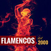Play & Download Flamencos del 2000 by Various Artists | Napster