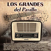 Los Grandes del Pasillo by Various Artists