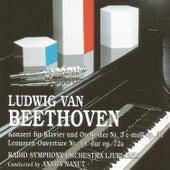Ludwin van Beethoven by Radio Symphony Orchestra Ljubljana