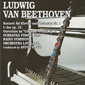 Play & Download Ludwing van Beethoven by Radio Symphony Orchestra Ljubljana | Napster