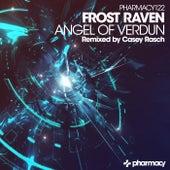 Angel of Verdun by Frost-RAVEN