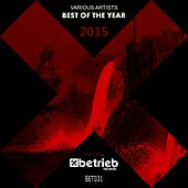 Play & Download Best Of The Year 2015 by Various Artists | Napster