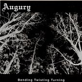 Bending Twisting Turning by Augury