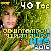 Play & Download 40 Top Downtempo & Ambient Chillout Hits 2016 (Best Of Psybient, Lounge, World, TripHop, Dub & Bass) by Various Artists | Napster