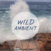 Wild Ambient, Vol. 2 (Best Of Electronic Downbeat) by Various Artists
