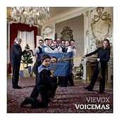 Voicemas by VieVox