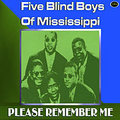 Please Remember Me by The Five Blind Boys Of Mississippi