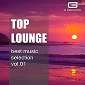 Play & Download Top Lounge Best Music Selection, Vol. 1 by Various Artists | Napster