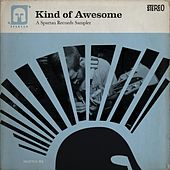 Play & Download Kind of Awesome: A Spartan Records Sampler by Various Artists | Napster