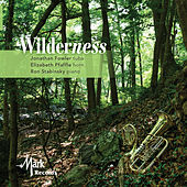 Play & Download Wilderness by Elizabeth Pfaffle | Napster