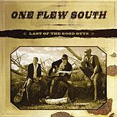 Play & Download Last Of The Good Guys by One Flew South | Napster