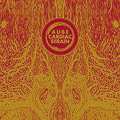 Cardiac Strain by Aube