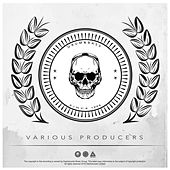 Play & Download Various Producers by Various Artists | Napster