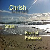 The Heart of Existance by Krish