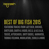 Play & Download Best of Big Fish 2015 by Various Artists | Napster