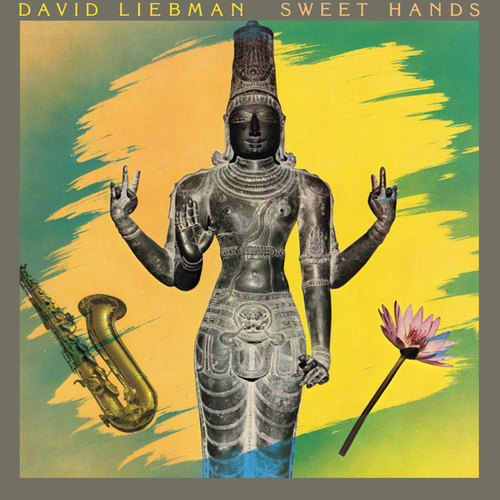 Play & Download Sweet Hands by David Liebman | Napster