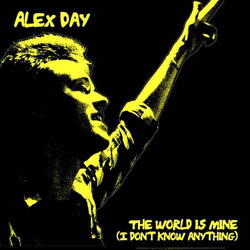 The World Is Mine (I Don't Know Anything) by Alex Day